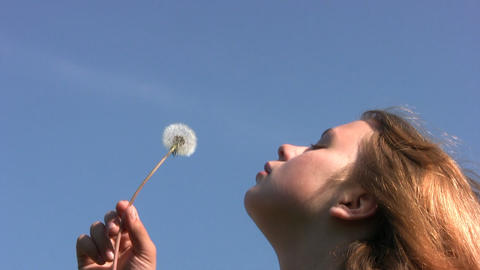 Girl, dandelion and sky Stock Video Footage