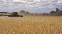 Header Harvesting an Oats Crop Stock Video Footage