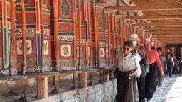 Tibetan pilgrimage, people, Tibet, religion, China Footage