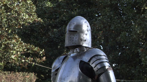 medieval fighting 11 Stock Video Footage