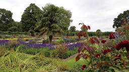 The Sunken Garden Kensington Palace London UK 1 Footage
