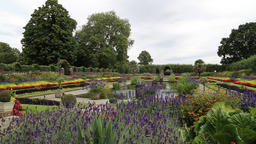 The Sunken Garden Kensington Palace London UK 2 Footage