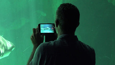 Man Filming Sea Life At Aquarium Live Action