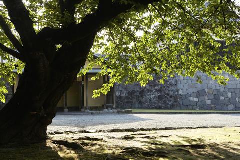 Royal Gate;Kumamoto City;Japan Fotografía