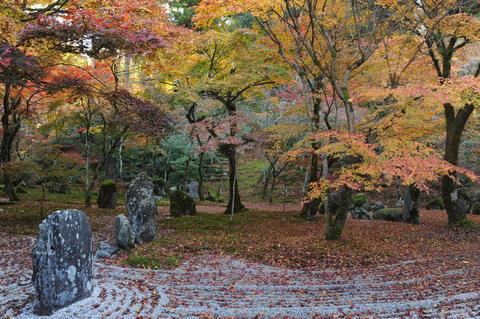 Light tai;Spot;Japan Fotografía