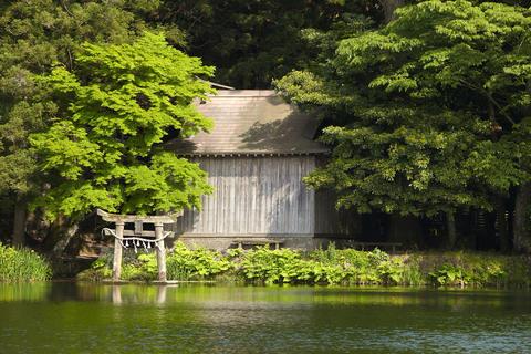 Lake Kinrinko Yufuin no Mori Japan Fotografía