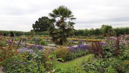 The Sunken Garden Kensington Palace London UK 5 Footage