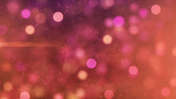 Animated Screen Saver of Pink and Purple With a Flash and Back Focus Motion Back Animation