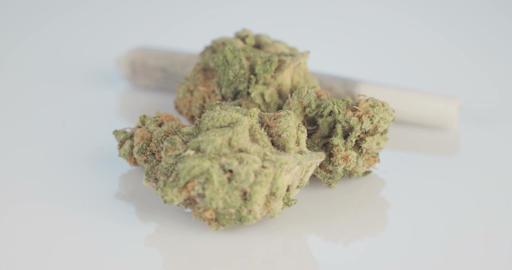 Macro shot of medicinal marijuana on white background Live Action