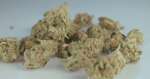 Macro shot of medicinal marijuana on white background Footage