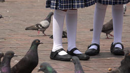 Girls In Plaza With Pigeons Live Action