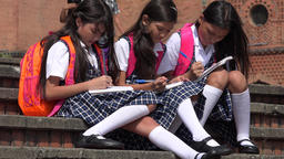 Elementary School Children Studying Footage