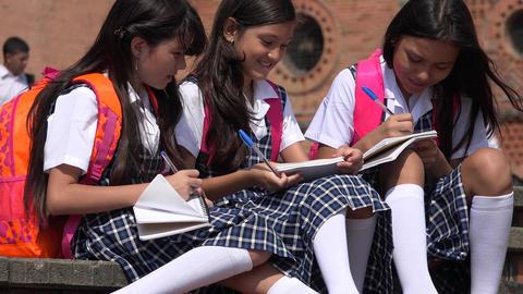 School Children School Kids Live Action