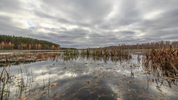 Low clouds reflected in the water. Autumn, Russia. HDR. TimeLapse Filmmaterial