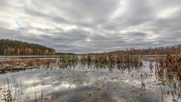Low clouds over the marshy pond. Autumn, Russia. HDR. TimeLapse Footage