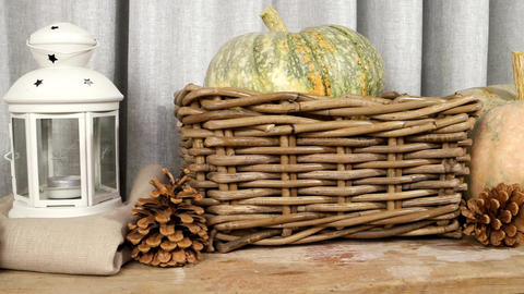 Still life with pumpkins, pine cones and lanterns Live Action