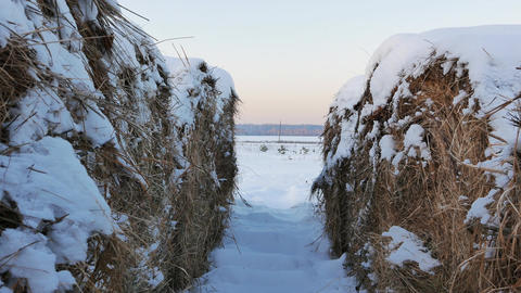 Rolls of hay under the snow. Sunset. Slider Footage
