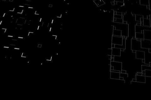 Fly Circuit Wall Stock Video Footage