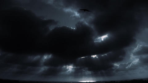 HD Ocean Horizon Bird Shape Stock Video Footage