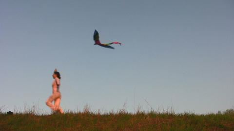woman with kite Stock Video Footage