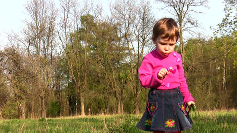 child with dandelion Stock Video Footage