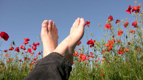 Sky. Poppies. Feet Stock Video Footage