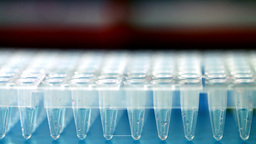 Multipipette Stock Video Footage