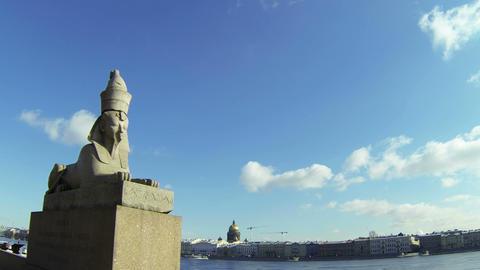 Sphinx at the University embankment in St. Petersburg Stock Video Footage