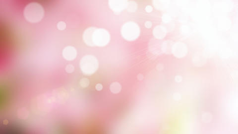 Pink blurs background Stock Video Footage