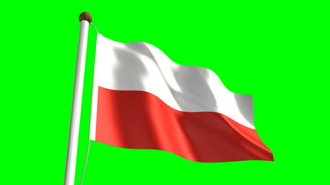 Poland flag Stock Video Footage