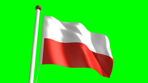 Poland flag Stock Video Footage