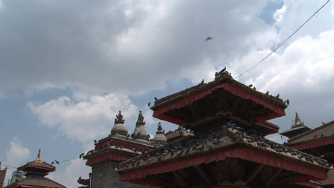 Pigeons at the rooftop of a temple Stock Video Footage