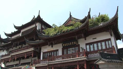 Rooftop tilt houses Stock Video Footage