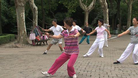 Sword practice Stock Video Footage