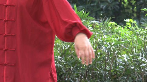 Tai Chi hands Stock Video Footage