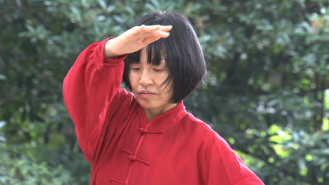 Beautiful Tai Chi Stock Video Footage