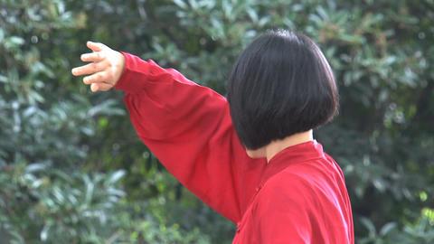 Beautiful Tai Chi Stock Video Footage