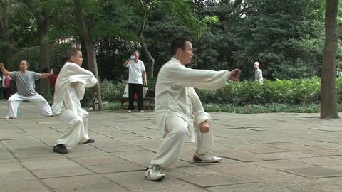 Kung fu in Zhongshan park, Shanghai Stock Video Footage