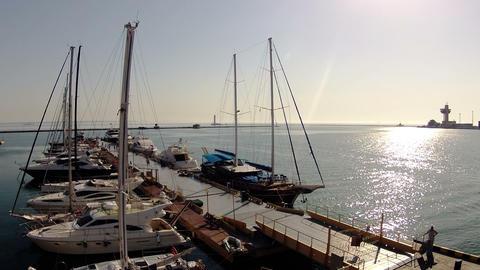 Life of the marina. Timelapse Footage