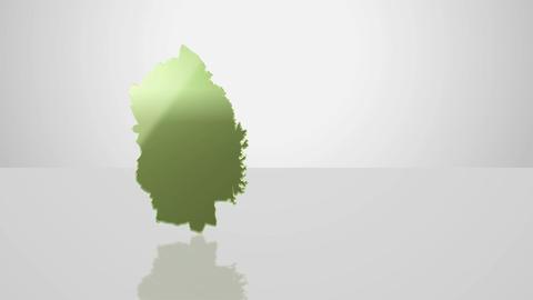 H Dmap b 03 iwate Animation