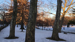 Snowy park at dusk Footage