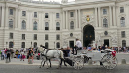Horse cab on the street of Vienna, Hofburg Palace in the background Footage