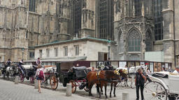 Horse carriages parking lot next to St. Stephen's Cathedral in Vienna Footage
