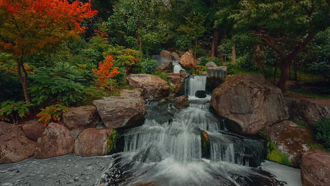 Cinemagraph style footage showing a beautiful lush Japanese garden with flowing  Footage