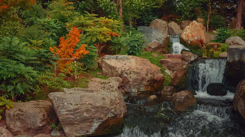 Closeup shot of an exquisite lush Japanese garden with a waterfall in early autu Footage
