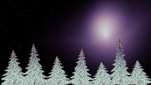 Sparkling Christmas trees shining in the starry night Animation