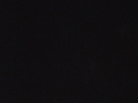 shel 02 46 Stock Video Footage