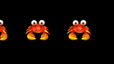 cartoon crabs crawl Stock Video Footage