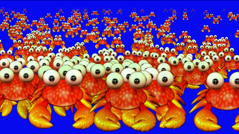 a group of cartoon crabs crawl Animation