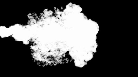 White Smoke. Matte channel included Stock Video Footage